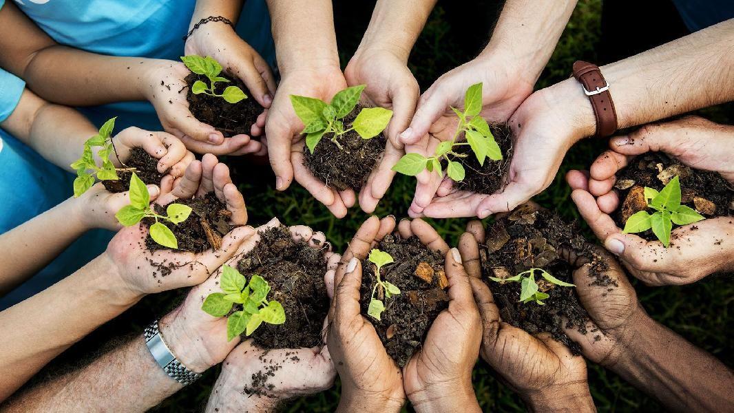 Дети Калмыкии от 7 до 16 лет могут подать заявку на участие в конкурсе «Экология – дело каждого»