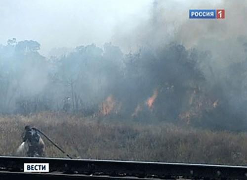 На территории РФ бушуют лесные пожары