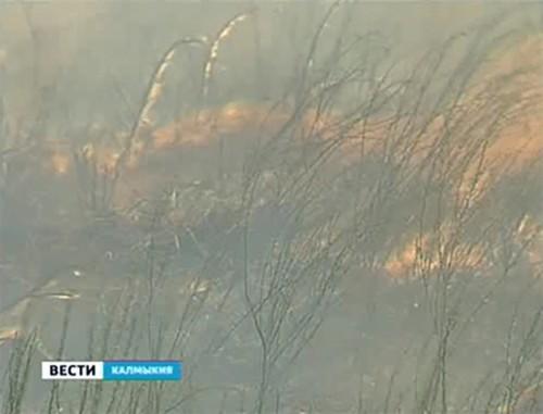 В Калмыкии до 3 августа сохранится чрезвычайная пожароопасность