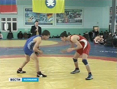 Спортсмен из Калмыкии победил на Всероссийском турнире по вольной борьбе