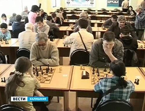 Шахматная гонка в степи