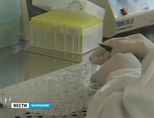 С начала 2012 года в Калмыкии зарегистрировано 6 случаев заболевания людей бруцеллезом
