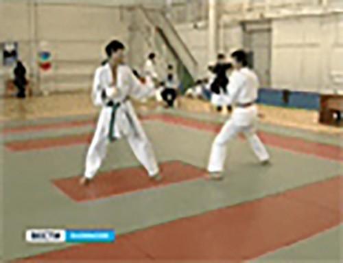В Элисте прошел турнир по карате среди детей