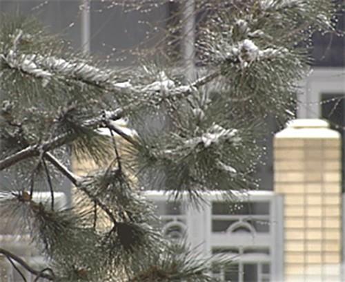 Крещенские морозы в Калмыкии отменяются
