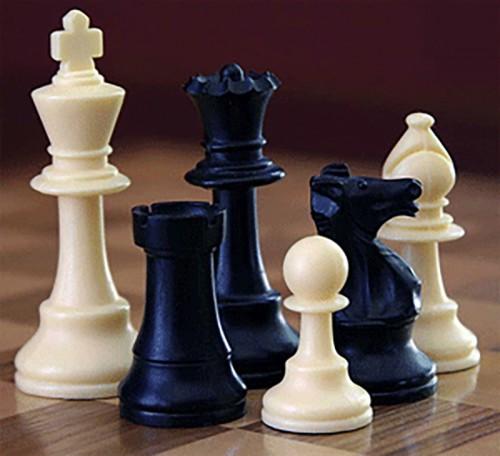 Калмыцкие шахматисты выступили на Кубке России в Таганроге