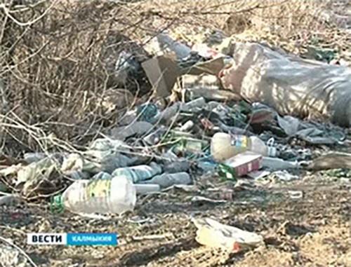 В Калмыкии начался рейд по несанкционированным свалкам