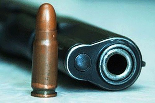 Жителями Калмыкии добровольно сдано более 40 единиц огнестрельного оружия