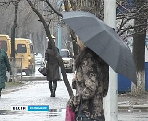 В Калмыкии вся рабочая неделя будет дождливой