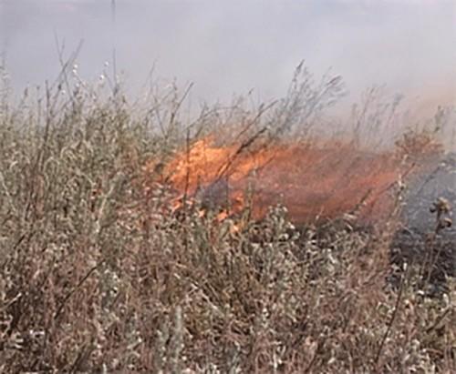 В Калмыкии ожидается чрезвычайная пожароопасность