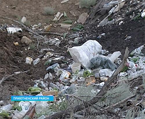 В Приютненском районе выявлено 7 несанкционированных свалок