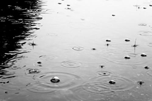 На этой неделе в Калмыкии ожидается прохладная погода с кратковременными дождями