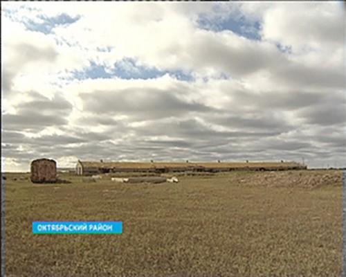 В Октябрьском районе построят ферму по организации и откорму КРС