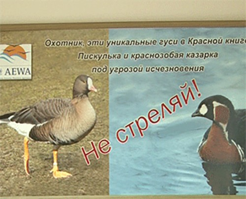 В Калмыкии открывается охотничий сезон