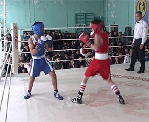 В Элисте стартовал Всероссийский турнир по боксу памяти Ц.Балзанова