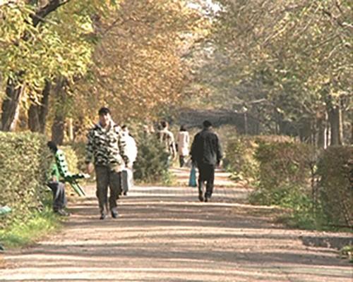 Холодный фронт принесет в Калмыкию дожди и похолодание