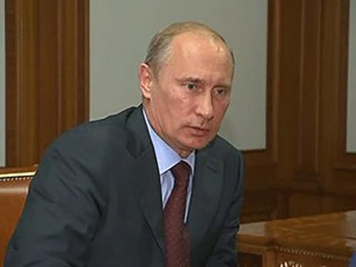 Владимир Путин назначил новых членов Общественной палаты