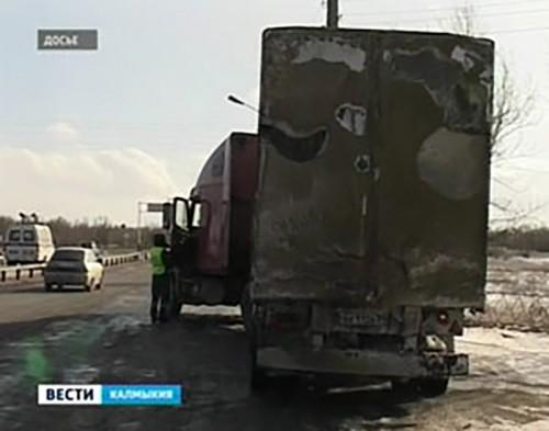На границе Калмыкии с Дагестаном задержаны 34 головы КРС