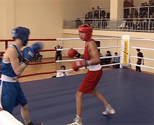 Участников чемпионата России по боксу определят в Элисте