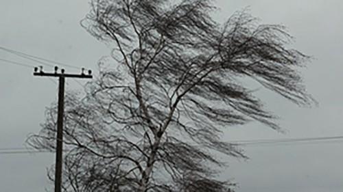 В Калмыкии ожидается усиление ветра до 30 м/с