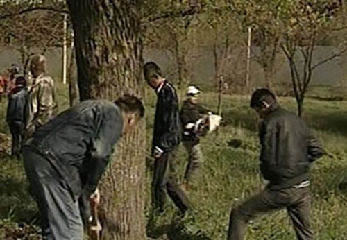 В Элисте состоялся Всероссийский экологический субботник «Зеленая Весна»