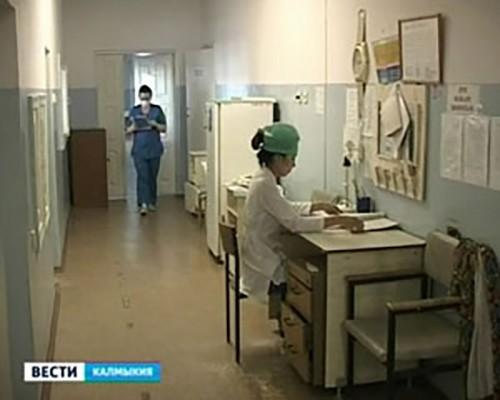 В Калмыкии зафиксировано 35 укусов клещей