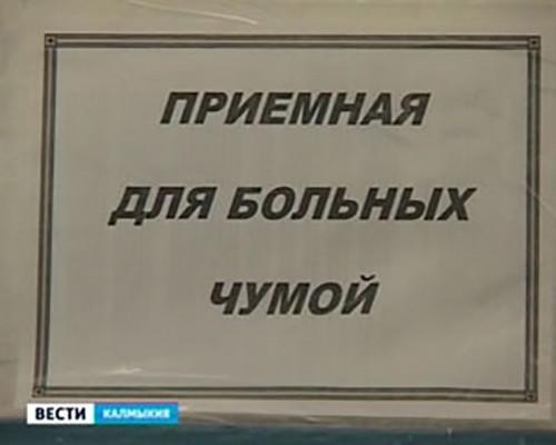 Ситуация с эпизоотикой чумы в Калмыкии остается напряженной