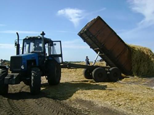 В Калмыкии приступили к заготовке грубых кормов