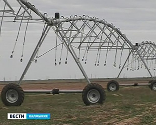 Алексей Орлов встретится с сельхозтоваропроизводителями Яшкульского района