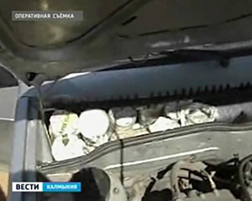 В Калмыкии задержан за перевозку осетровой икры житель Георгиевска