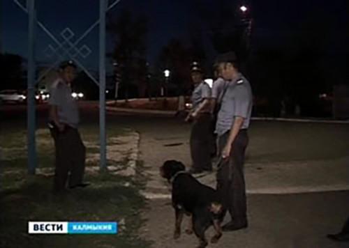 МВД Калмыкии продолжает проверку по факту ночной стрельбы
