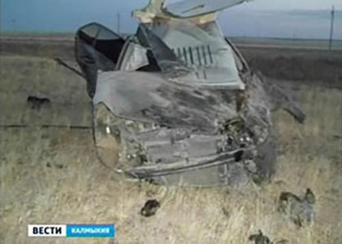 За неделю на дорогах Калмыкии произошло 17 ДТП. Есть жертвы