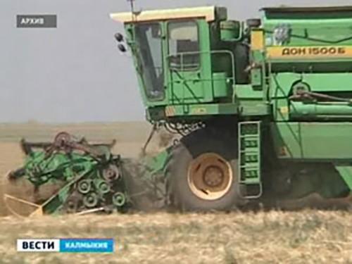 Калмыкия в 2014 году собрала 292 тысяч тонн зерна