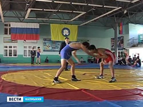 В Элисте завершился Всероссийский турнир по вольной борьбе