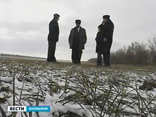 Регионы получат 92 миллиарда рублей на развитие сельского хозяйства
