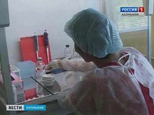 В Калмыкии 15 человек обратились за помощью к врачам после укуса насекомых