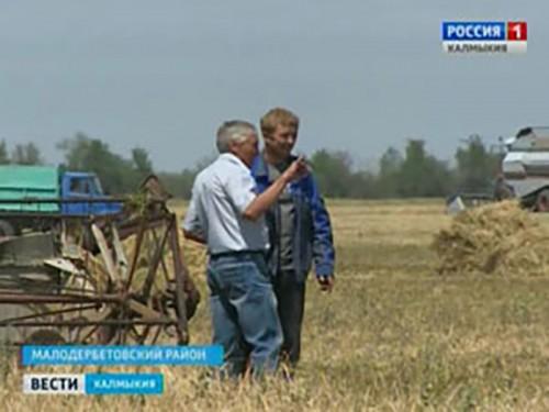 Жаркая пора для аграриев Калмыкии