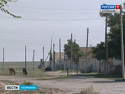 Правительство России инициирует проект об ограничении поголовья скота в личном подсобном хозяйстве