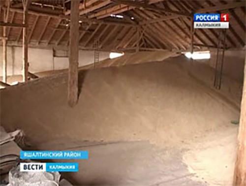 В Яшалтинском районе похитили зерно