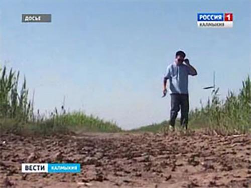 В Калмыкии введена повышенная готовность к распространению саранчи