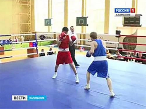 В Элисте стартует отборочный турнир к чемпионату мира среди студентов по боксу