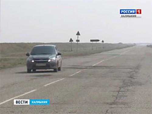 В Калмыкии увеличилось число наездов автомобилей на животных