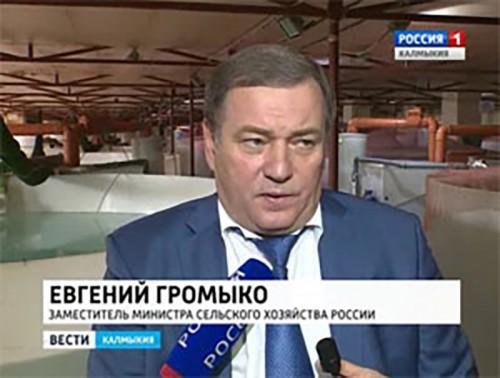 Евгений Громыко посетил завод по производству осетровых в Элисте