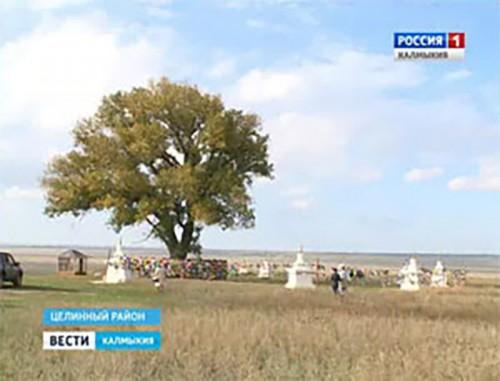 В поселке Хар-Булук Целинного района отметили 160-летие ламы Пурдаш-багш