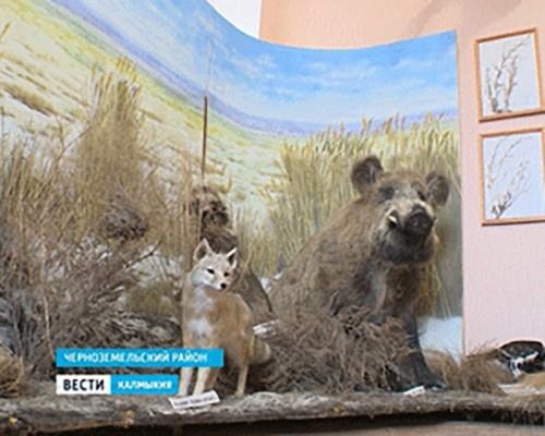 К Всероссийской акции присоединились школьники Черноземельского района