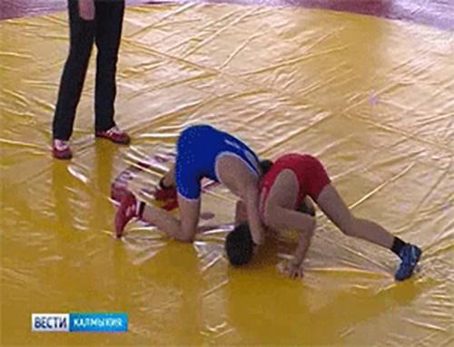 """Фестиваль """"Юный борец"""" выявил победителей"""