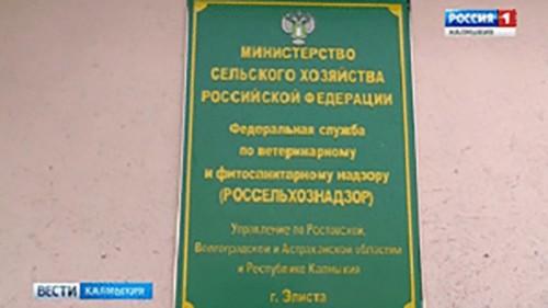 В 3 дошкольных учреждениях республики обнаружили просроченную партию крупы
