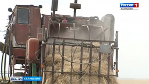 В Калмыкии продолжается кампания по заготовке кормов