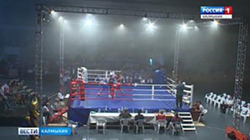 В Элисте прошел турнир по боксу