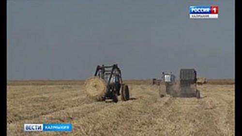 В хозяйствах республики продолжается заготовка кормов