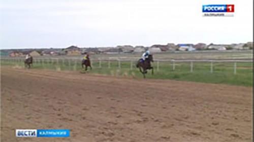 На столичном ипподроме прошёл конно-спортивный праздник